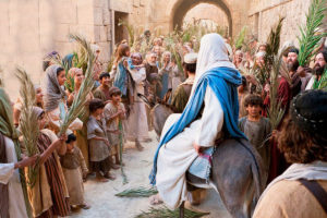 Palm-Sunday2